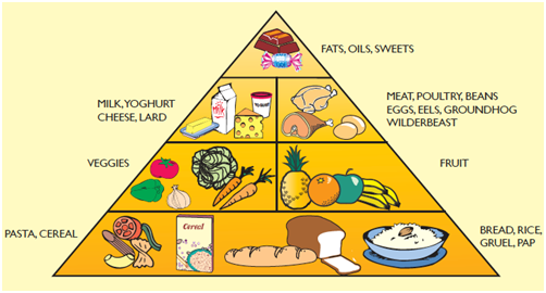 Poster On Healthy Food And Balanced Diet