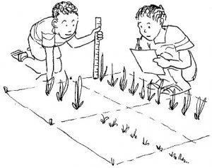 Two children measure seedlings growing from the ground. Representing Nutrition in Tamil.