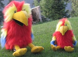 Our parrot puppets help children remember the 100 health messages